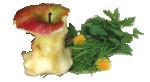 Scarti Alimentari e Organici